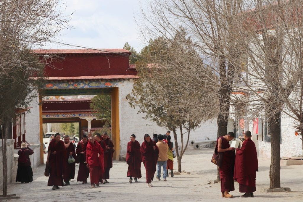 Group of monks in Sera monastery